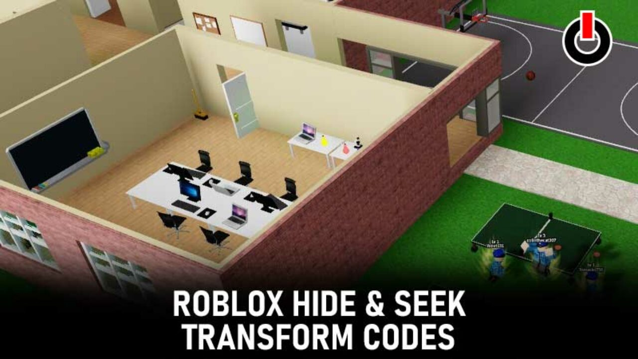 Hide and Seek Transform Codes